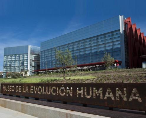 Museo-de-la-evolucion-humana4